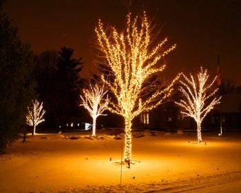 holiday-lighting-1