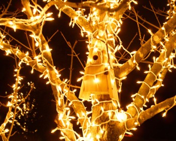holiday-lighting-1a