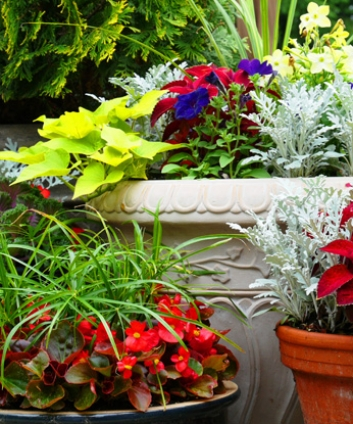 About Autumn Oaks Landscaping